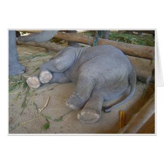 Sleeping Baby Elephant Card