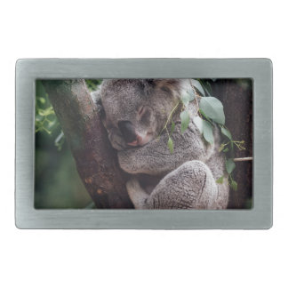 Sleeping Baby Koala Belt Buckles