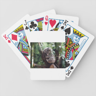 Sleeping Baby Koala Bicycle Playing Cards