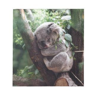 Sleeping Baby Koala Notepad