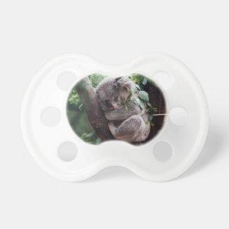Sleeping Baby Koala Pacifier