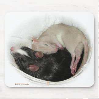 Sleeping baby rat mouse pad