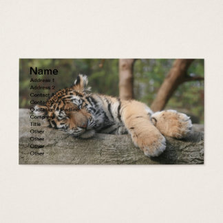 Sleeping Baby Tiger Business Card