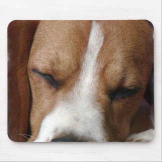 Sleeping Beagle Mouse Pad