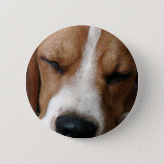 Sleeping Beagle Round Button