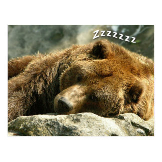 Sleeping Bear Postcard