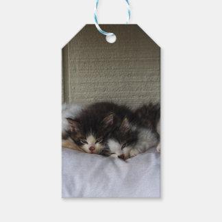 Sleeping Beauties Gift Tags
