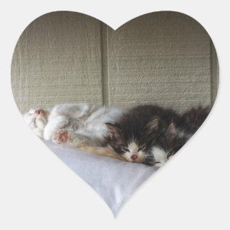 Sleeping Beauties Heart Sticker