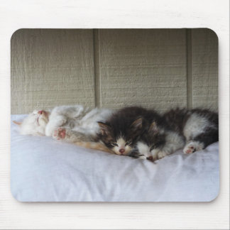 Sleeping Beauties Mouse Pad