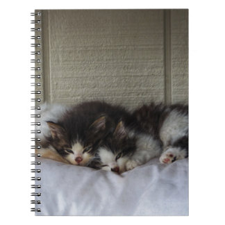 Sleeping Beauties Notebook