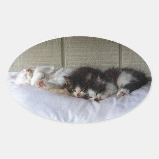 Sleeping Beauties Oval Sticker