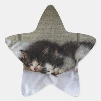 Sleeping Beauties Star Sticker