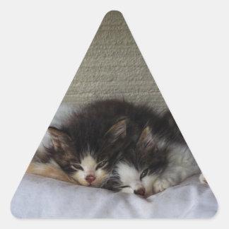 Sleeping Beauties Triangle Sticker