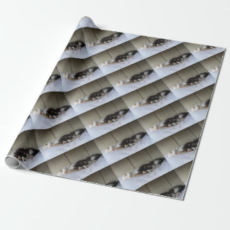 Sleeping Beauties Wrapping Paper