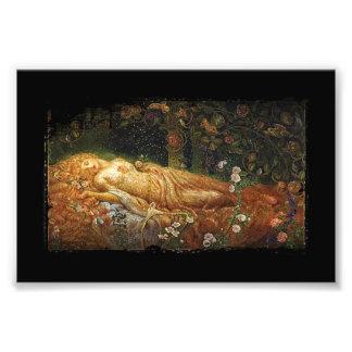 Sleeping Beauty and a Harp Photograph