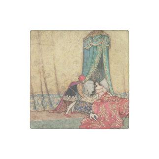 Sleeping Beauty vintage illustration Stone Magnets