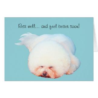 Sleeping Bichon Frise Illustrated Greeting Card