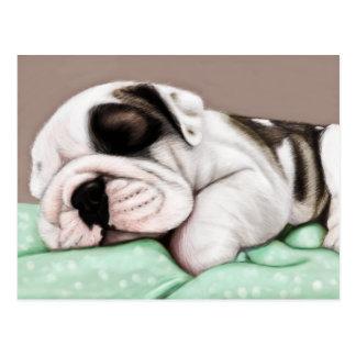 Sleeping Bulldog Puppy Postcard
