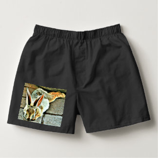 Sleeping Bunny Custom Men's Boxers