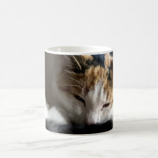 Sleeping Calico Cat Magic Mug