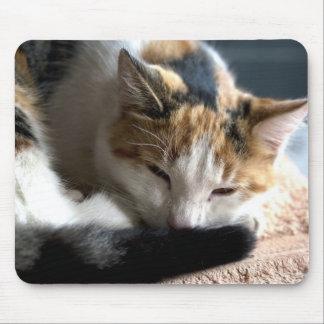 Sleeping Calico Mouse Pad