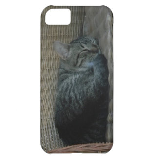 Sleeping Cat iPhone 5 Case