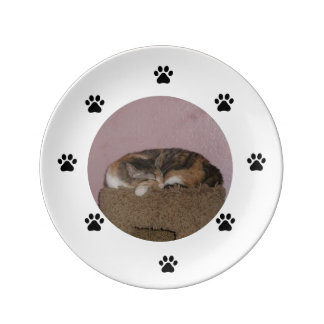 sleeping cat plate