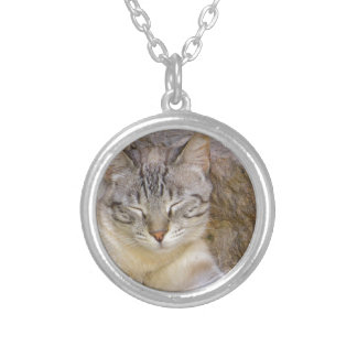 Sleeping cat silver plated necklace