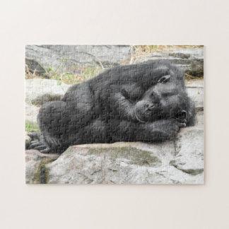 Sleeping Chimpanzee Puzzle