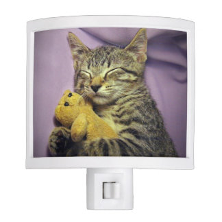 Sleeping Daisy the Kitty Cat Kitten w/ Teddy Bear Night Light