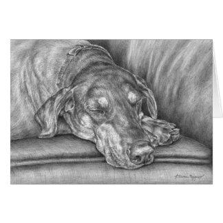 Sleeping Doberman Dog Drawing by Kelli Swan Card