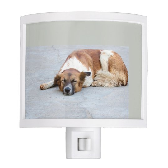 Sleeping Dog Nite Lite