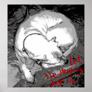 Sleeping dog (poster) poster