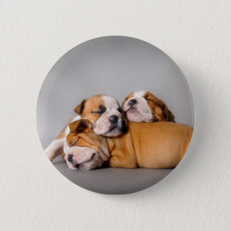 Sleeping English bulldog 2 Inch Round Button