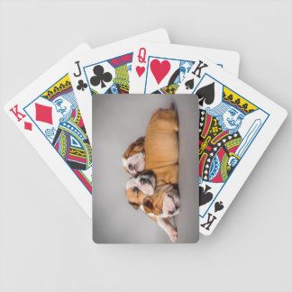 Sleeping English bulldog Bicycle Playing Cards