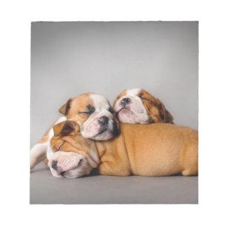 Sleeping English bulldog Notepad