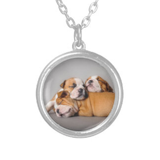 Sleeping English bulldog Silver Plated Necklace