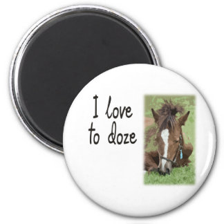 Sleeping Foal - I Love To Doze 2 Inch Round Magnet