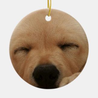 Sleeping Golden Retriever Ornament