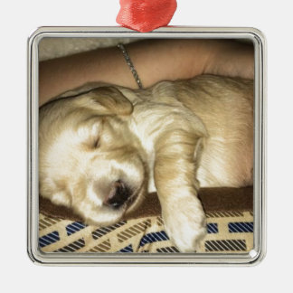 Sleeping GoldenDoodle Puppy Metal Ornament