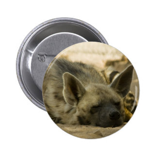 Sleeping Hyena  Button