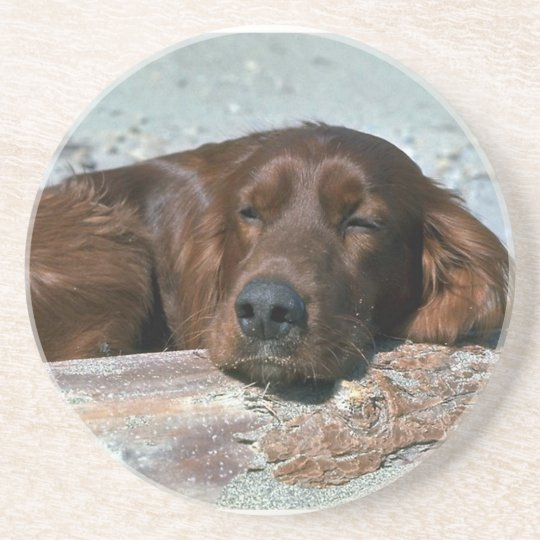 Sleeping Irish Setter Coaster