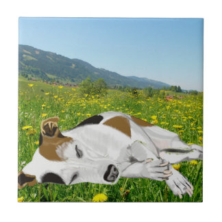 Sleeping Jack Russell in a colourful flower Meadow Tile