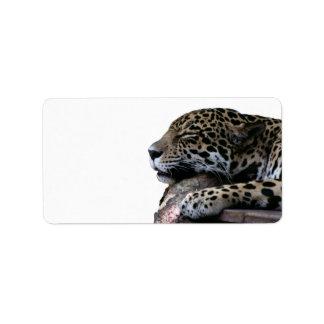 Sleeping Jaguar no background Custom Address Labels