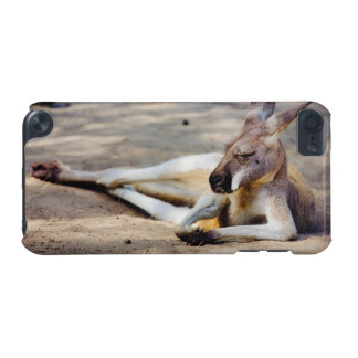 Sleeping Kangaroo, Wildlife Animal Photography iPod Touch (5th Generation) Case