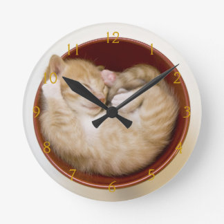 Sleeping kitten in simple red bowl on white round clock