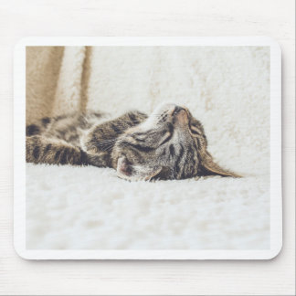 Sleeping Kitten Mouse Pad