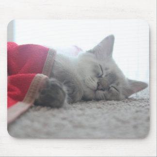 Sleeping Kitten Mousepad