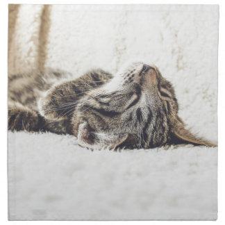 Sleeping Kitten Napkin