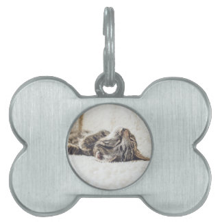 Sleeping Kitten Pet Tag